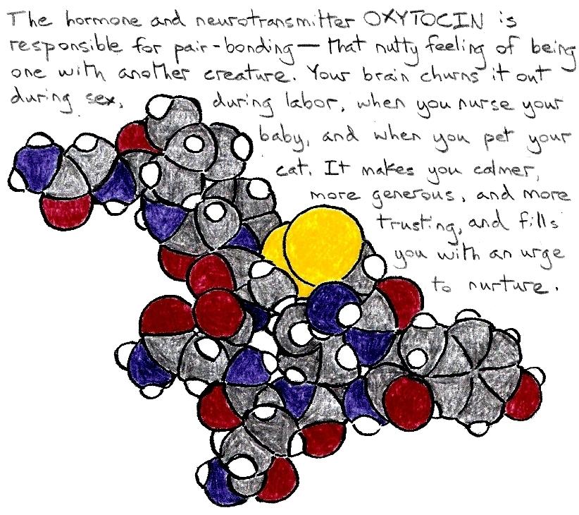 Stixytocin
