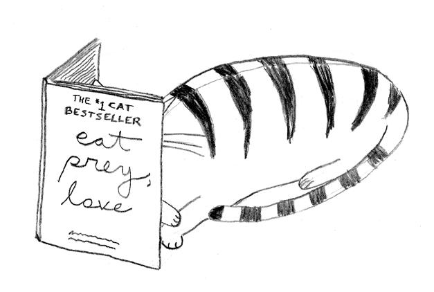 The #1 Cat Bestseller