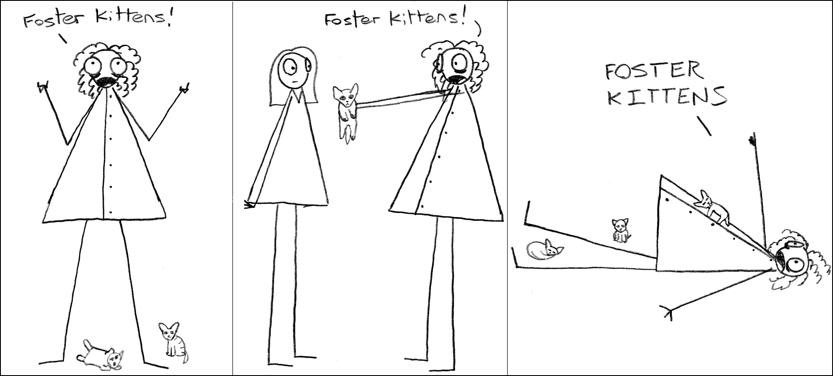 Foster kittens.